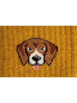 Chaussettes campus ocres à côtes ornées d'une tête de Beagle