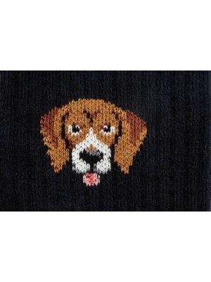 Chaussettes campus marine à côtes ornées d'une tête de Beagle
