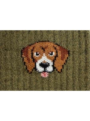 Chaussettes campus kaki à côtes ornées d'une tête de Beagle
